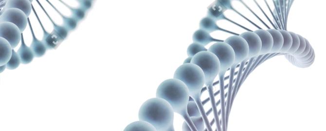 Medicina Moleculares e Genômica IACS